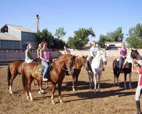 Hen Party Horse Riding